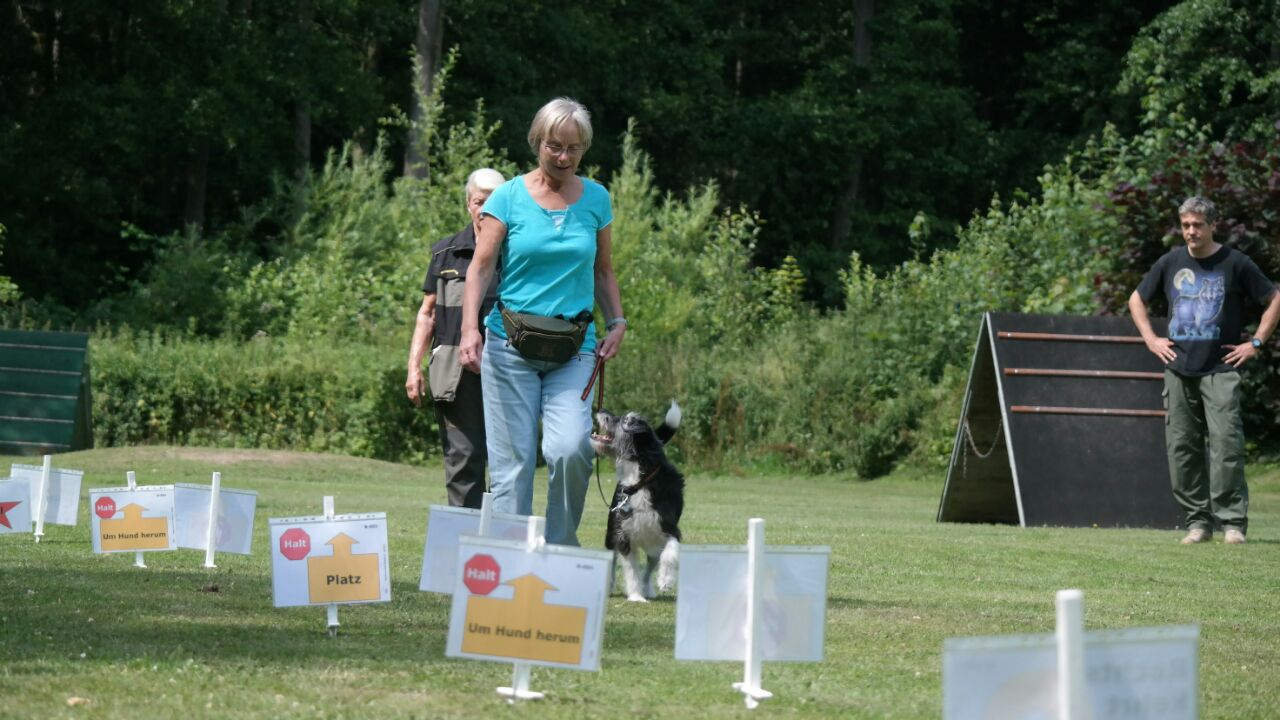 %GSV-Friedrichsort Rally Obedience Bilder