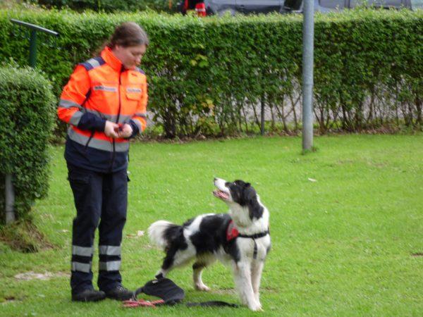 %GSV-Friedrichsort Rettungshundesport