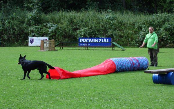 %GSV-Friedrichsort Rettungshundesport Bilder