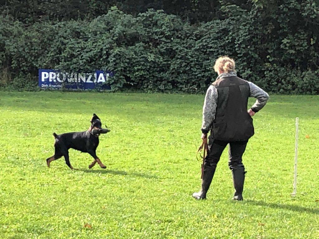 %GSV-Friedrichsort Dummyprüfung 2019