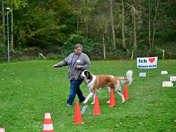 %GSV-Friedrichsort GSV Rally Obedience Turnier